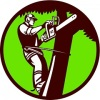 Folsom Tree Service
