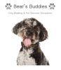 Bear's Buddies Dog Walking & Pet Services Shropshire