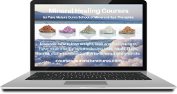 Courses for therapists