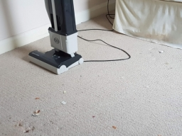 Sebo professional vacuum cleaner