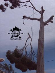 J K Underwoods Tree & Garden Services