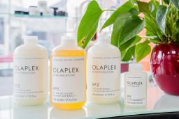 Olaplex Organic Treatment