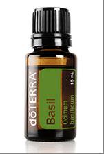 Basil oil - basil essential oil