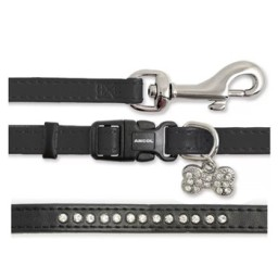 dog and puppy leads and collars at elliots