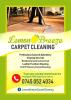 Lemon Breeze carpet & Upholstery Cleaning