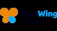 BlueWing Financials