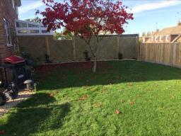 BN Fencing  - Trellis Fence