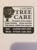 Lucas Tree Care