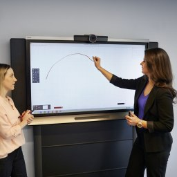 Interactive Whiteboards Video Conferencing Systems