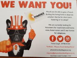 Volunteers always needed!