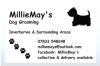 MillieMay's Dog Grooming