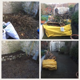 Clearance of two sheds and some green waste