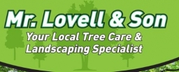 Tree Surgeons Swindon