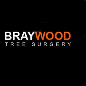 Braywood Tree Surgery Ltd