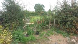 Fencing Supplier Shrewsbury, Fencing Merchants, Shrewsbury