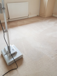 Sebo duo agitated the cleaning mix into the carpet