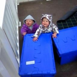 Removal Boxes Edinburgh