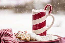 Luxury Hot Chocolate Cart Hire