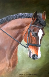 Horse portrait acrylic painting