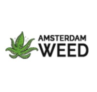Amsterdam weed