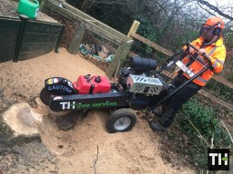 Stump Grinding in Essex