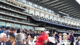 Tour Royal Ascot Ladies Day 2017 with City Steps