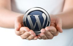 Wordpress Web Design Bexhill