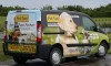 Pet Taxi Services Ltd