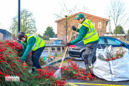 Corporate grounds maintenance in London