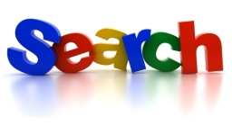Resized Google Search