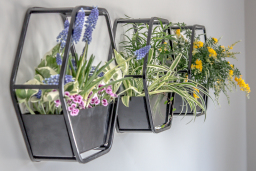 Flowering Wall Planters