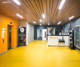 Reception area at ProfileTree office base of Innovation Factory, Belfast.