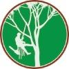 Dinah Tree Service Boulder