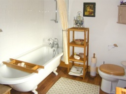 the luxurious bathroom
