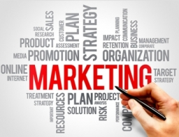 Image with the words marketing