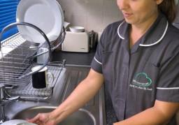 Domiciliary care (Home care)