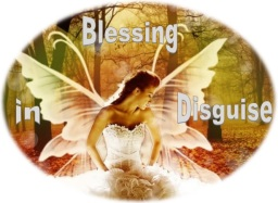 www.blessingsindisguise.co.uk