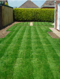 Lawn Cutting Services Leicester