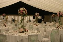 Berkshire Event Florist - Horticouture Flowers