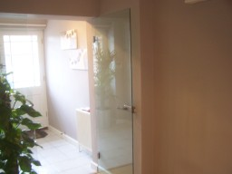 Internal Frameless Glass Door