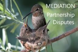 Partnership Disputes