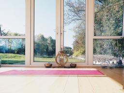 Detox & Renew at Aruna Yoga, Rathcoffey