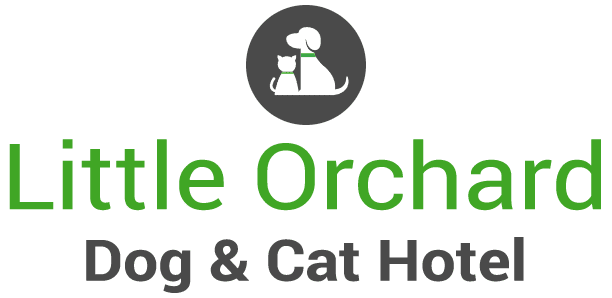 Cat And Dog Hotel Lingfield