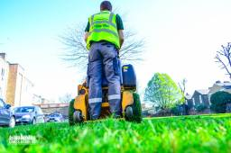 Grounds maintenance for Public sector in London