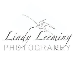 Lindy Leeming Photography