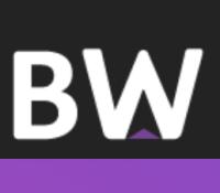 Basingstoke websites