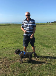 Dog walking on the South Downs