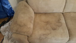 Sofa cleaning sunderland before