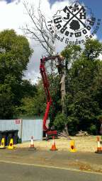 J K Underwods Tree & Garden Services info@jkunderw
