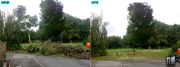 Removing a storm damaged Ash tree in Gamston